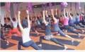 瑜伽学班,专注于瑜伽专业培训机构等领域