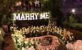 一遇求婚的杭州求婚,质量好上好