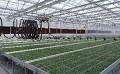 邯郸大棚喷灌机专业建设|移动式大棚喷灌机批发价格