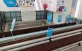 【龙新建材】钢丝网架保温板_钢丝网架板_厂家直销_质优价廉