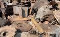 工地废料回收价格-工地废料回收当选友众再生资源回收