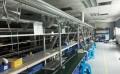 实验室电烙铁抽烟公司实验室电烙铁吸烟价格研发室电烙铁吸烟系统