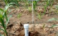 800S管式土壤墒情测量仪,管式土壤水分测量仪,墒情监测站
