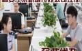 西安沣东新城营业执照,西安辰宇财务