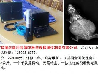 检测老鼠用高清DR板检测仪
