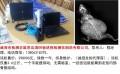 威海市检测老鼠用高清DR板检测仪制造有限公司