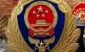 铸铝消防徽定做-生产消防救援队徽章