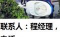 青岛市路灯高杆灯广场灯中华灯智慧灯杆