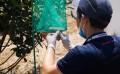 武汉专业除鼠除白蚁公司,提供虫害防制等服务,免费上门勘察