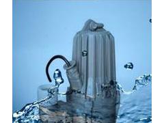 供应蓝深集团WQ30-16-3潜污泵